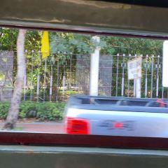 치앙마이 대학교 여행 사진