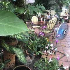 Chiang Mai Breakfast World User Photo