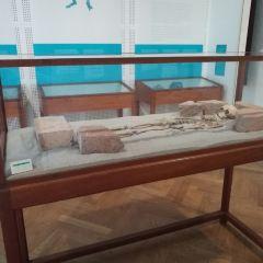 National Museum of Denmark User Photo