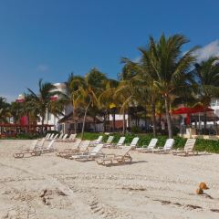 Playa Las Perlas User Photo