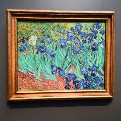 蓋茨美術館用戶圖片