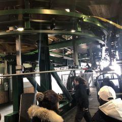Banff Gondola User Photo