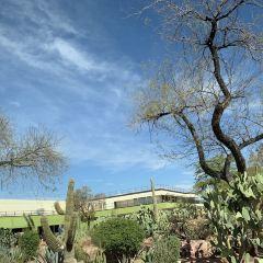 Cactus Gardens User Photo
