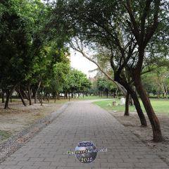 原生植物園用戶圖片