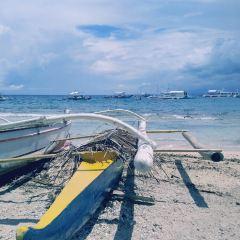 Apo Island User Photo