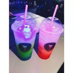 Star Bagel Cafe User Photo