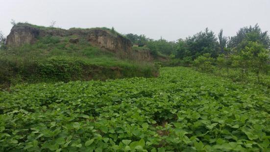 Taixishangdai Ruins