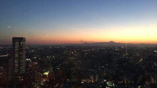 東京觀光信息中心 都廳本部