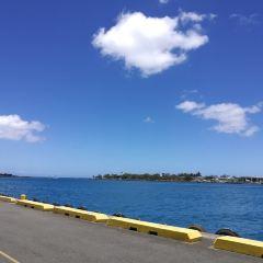 Aloha Tower Marketplace User Photo