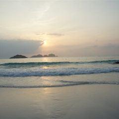 熱浪島用戶圖片