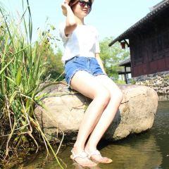 Butterfly Island User Photo