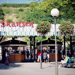 스칸센 여행 사진