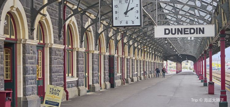 Dunedin Railway Station2