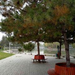 內蒙古大學用戶圖片