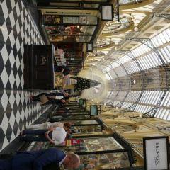 皇家拱廊用戶圖片