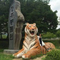 Cheongju Zoo 청주동물원 여행 사진