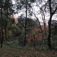 Huimin Park User Photo