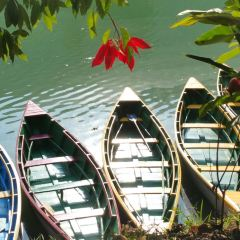 Phewa Lake User Photo