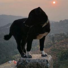 Nagarkot User Photo