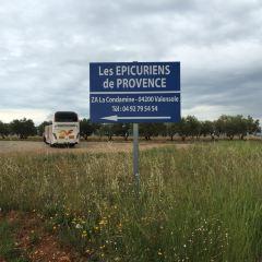 普羅旺斯用戶圖片