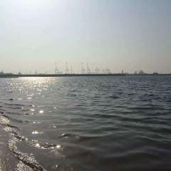 Binhai Boardwalk User Photo
