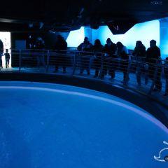 海登天文館用戶圖片