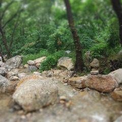 嵩陽公園用戶圖片