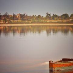玫瑰湖用戶圖片