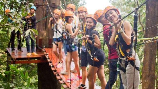 Skyline Adventures Jungle Leap