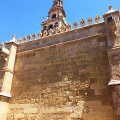 코르도바 여행 사진