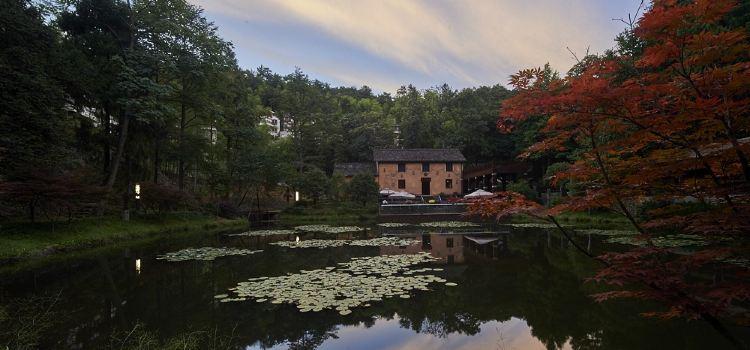 Yaolin National Forest Park