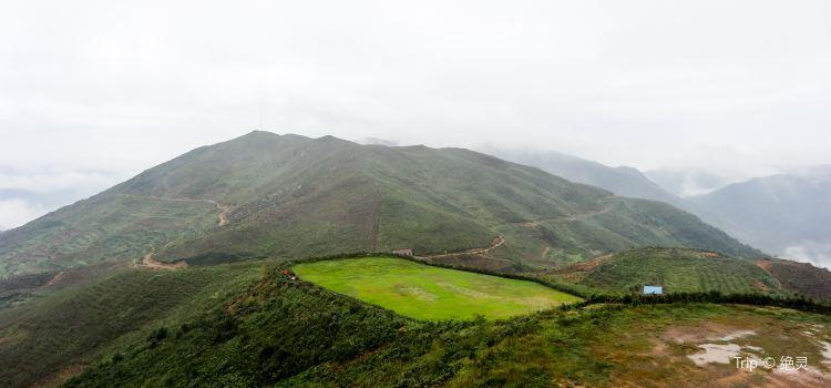Shangyu District