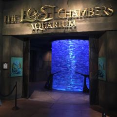 The Lost Chambers Aquarium User Photo