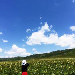 루얼까이 대초원 여행 사진