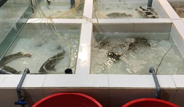 Nam Gia Seafood Restaurant2