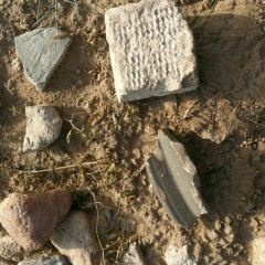 漢代麻池古城遺址用戶圖片