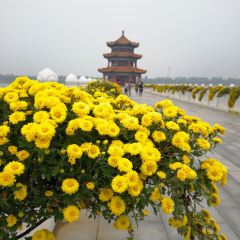 Taishan Tianyi Lake User Photo
