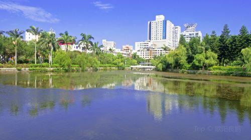 鴛鴦池公園