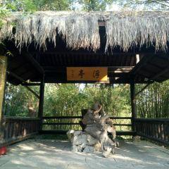梅竹山莊用戶圖片