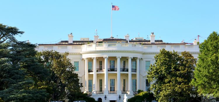 The White House3