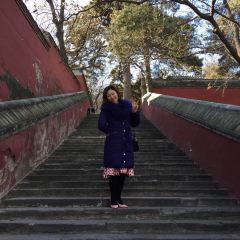 계대사 여행 사진