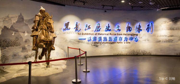 헤이룽장성(흑룡강성) 박물관1