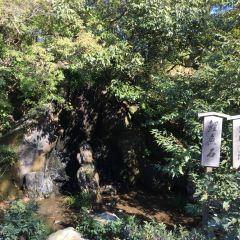 Kinkaku-ji User Photo