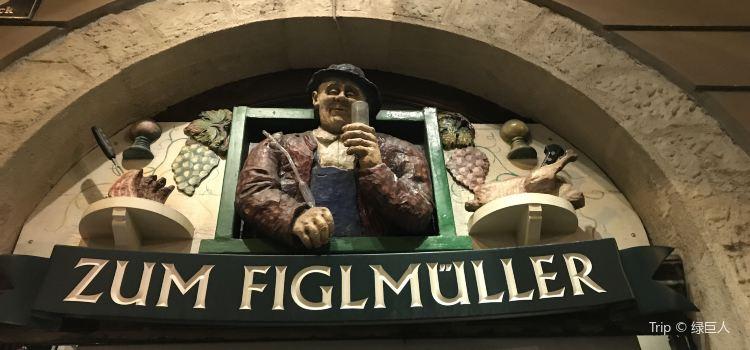 Figlmuller1
