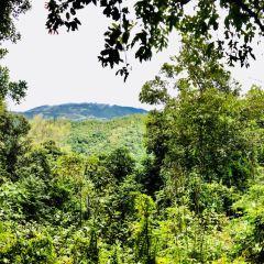 Bulang Mountain User Photo