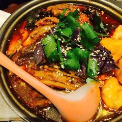 Tan Shi User Photo