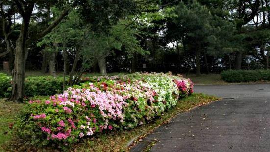 플라워파크 카고시마