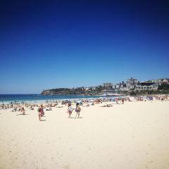 Reef Beach User Photo