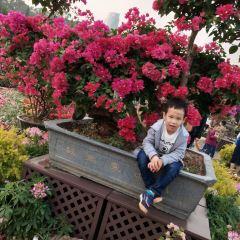Futian District Cultural Center User Photo