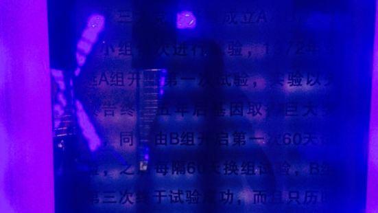 顛九宮密室逃脫(旺角店)